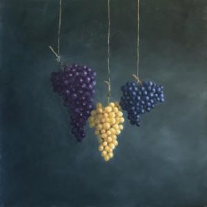Gino Sauro.Grappes de raisins. Huile sur toile. 20'' x 20''