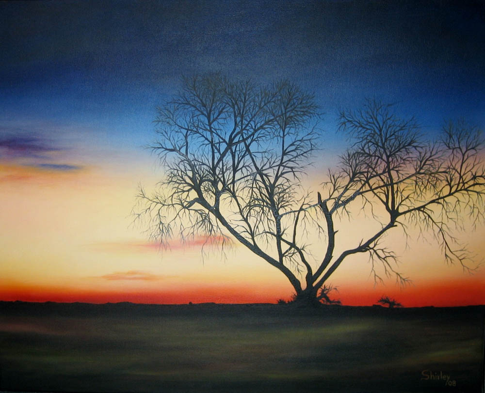 """Shirley Castrillon-L'arbre noir-Huile sur toile-16""""X20"""" 2008"""