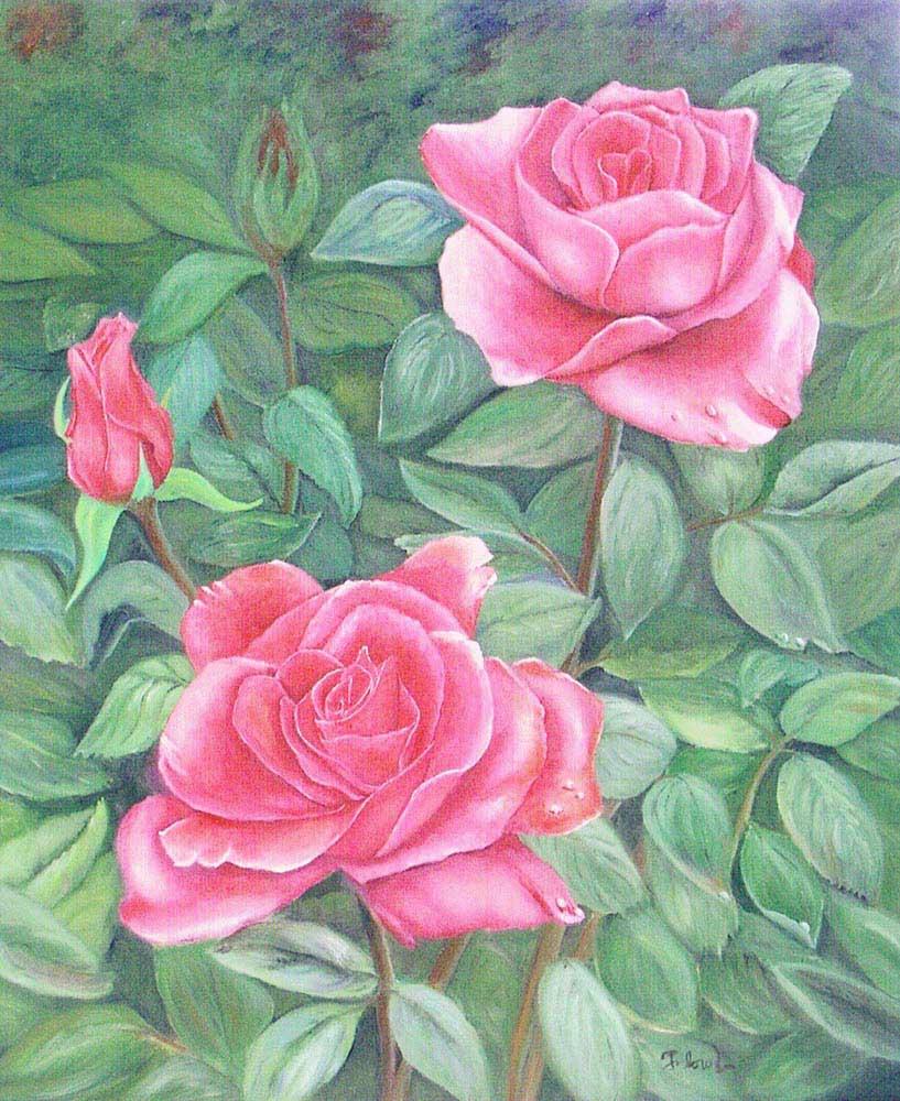 """Florence Lévesque. La Beauté des roses. Huile sur toile-16""""x20""""."""